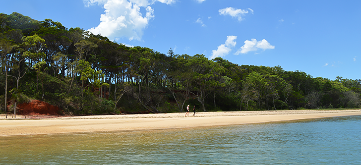 One of the many tropical islands within Moreton Bay